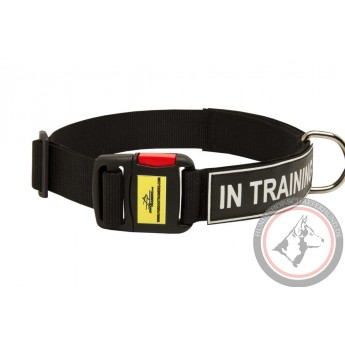 Logohalsband aus Nylon für Schäferhund