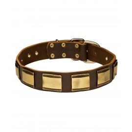 Ledernes Halsband für Schäferhund mit Messing Platten