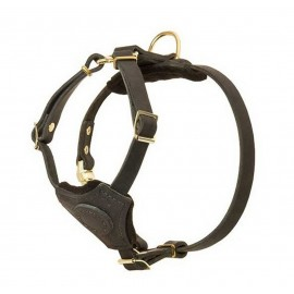 Hundegeschirr aus Leder für Schäferhunde mit Zubehör aus Messing