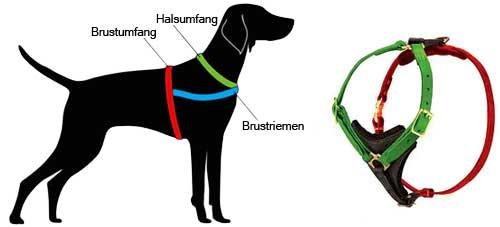 Wie Ihren Hund fuer  dieses Geschirr (H3) zu messen