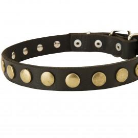 Dünnes Leder Halsband für Schäferhund mit runden Schmucken