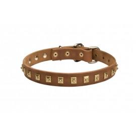 Feines Hund Halsband für Schäferhund