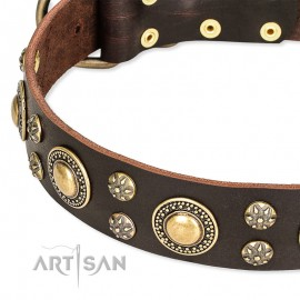 GSD Collar of Leather with Space-Like Brass Deco