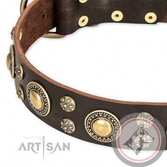 Verziertes Halsband aus Leder für Schäferhund mit runden Nieten