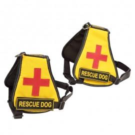 Leder Hundegeschirr K9 für Labrador-Hündchen, handgefertigt