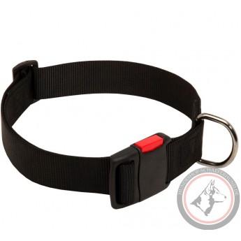Halsband aus Nylon für Labrador mit Klickverschluss handgefertigt