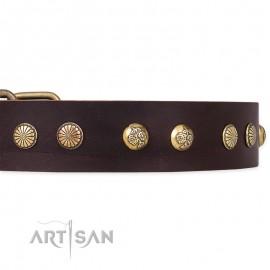 "German Shepherd Collar ""Bronze Sheen"" FDT Artisan Tan Leather"