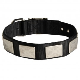 German Shepherd Collar of Nylon with Massive Plates