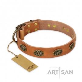 "German Shepherd Collar ""Magic Amulet"" FDT Artisan Tan Leather"