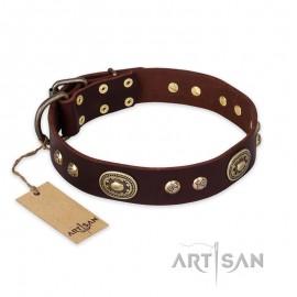 """German Shepherd Collar """"Breath of Elegance"""" FDT Artisan Tan Leather"""