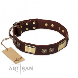 "German Shepherd Collar ""Golden Stones"" FDT Artisan Tan Leather"