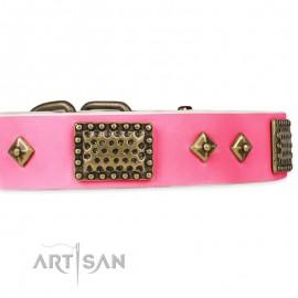 "German Shepherd Collar ""Frenzy Candy"" FDT Artisan Tan Leather"