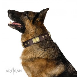 "FDT Artisan Leather Dog Collar with Studs for German Shepherd ""Captivating"""