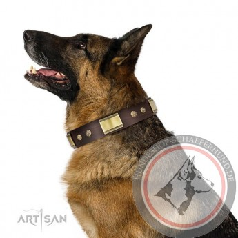 """FDT Artisan Leather Dog Collar with Studs for German Shepherd """"Captivating"""""""