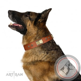"FDT Artisan Leather Dog Collar for German Shepherd ""Enchanting Spectacle"", tan colour"
