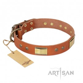 "FDT Artisan Leather Dog Collar for German Shepherd ""Enchanting Spectacle"", tan colour"