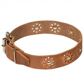 Leather Dog Collar with Nickel Decoration