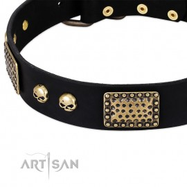 """German Shepherd Collar """"Biker Style"""" FDT Artisan Black Leather"""