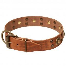 Stilvolles Halsband mit Schmuck für Schäferhund