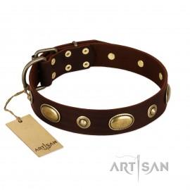 """German Shepherd Collar """"Hebe's Jewel"""" FDT Artisan Tan Leather"""