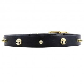 Leather Dog Collar with Row of Brass Spikes and Skulls