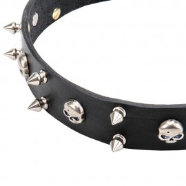 Leather Dog Collar with Nickel Spikes
