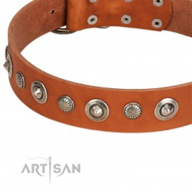 "German Shepherd Collar ""Autumn Story"" FDT Artisan Tan Leather"