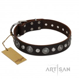 "German Shepherd Collar ""Victory Ode"" FDT Artisan Brown Leather"