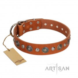 "German Shepherd Collar ""Natural Beauty"" FDT Artisan Tan Leather"
