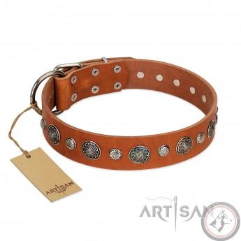 "German Shepherd Collar ""Natural Beauty"" FDT Artisan Tan Leather"