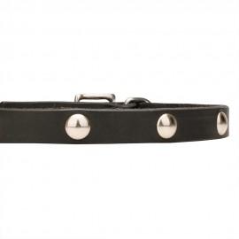 Weiches Lederhalsband mit runden Nieten für Schäferhund