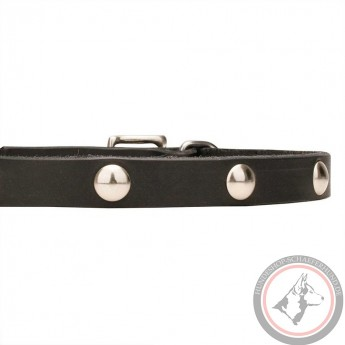 Soft Leather Dog Collar with 1 Row Nickel Studs