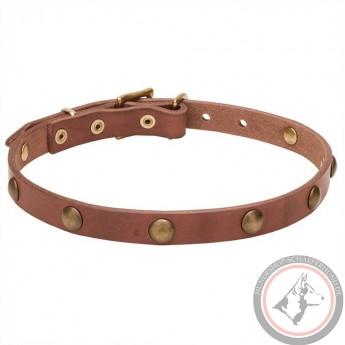 Lederhalsband mit Reihe von Messing Nieten für Schäferhund