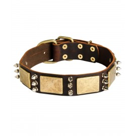German Shepherd Collar, Leather with Spikes and Plates