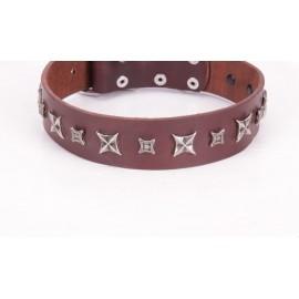 Braunes Nieten Silber Lederhalsband für Schäferhunde