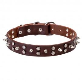 Sterne und Spikes Design Halsband für Schäferhund