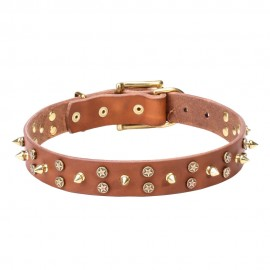 Leather Dog Collar with Brass Spikes