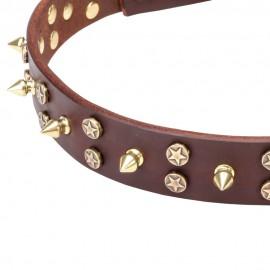 Lederhalsband mit Sterne und Spikes Stil für Schäferhunde