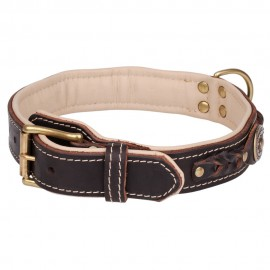 Fashionable leather collar with lichen and jewelry for German Shepherd