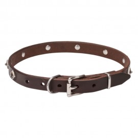 Leather Dog Collar with a Rows of Silver-like Pyramids