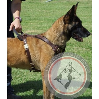 Brown Leather Harness for German Shepherd Training with 20% off
