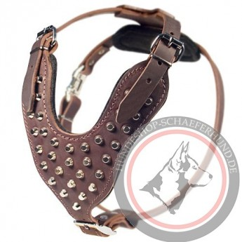 Brown LeatherGerman Shepherd Harness, Nickel Cones