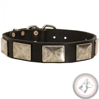 Vintage Nickel Platten Halsband für Schäferhund