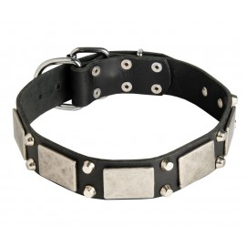German Shepherd Collar, Nickel Cones & Plates, Leather