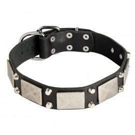 Lederhalsband mit Nickel Dekor für Schäferhund