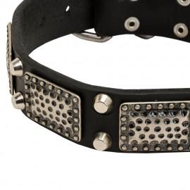 Schönes Lederhalsband für Schäferhund mit Schmuck