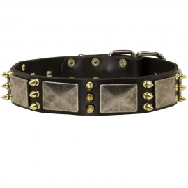 GSD Collar, Nickel Plates and Brass Spikes, Leather