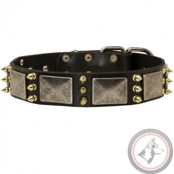 Geschmücktes Lederhalsband breit für Schäferhund