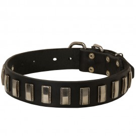 German Shepherd Collar, Wide Leather with Nickel Blocks