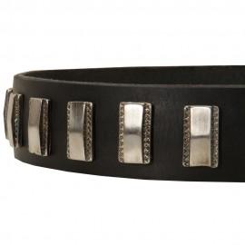 Lederhalsband mit vertikalen Nickel Platten für Schäferhunde